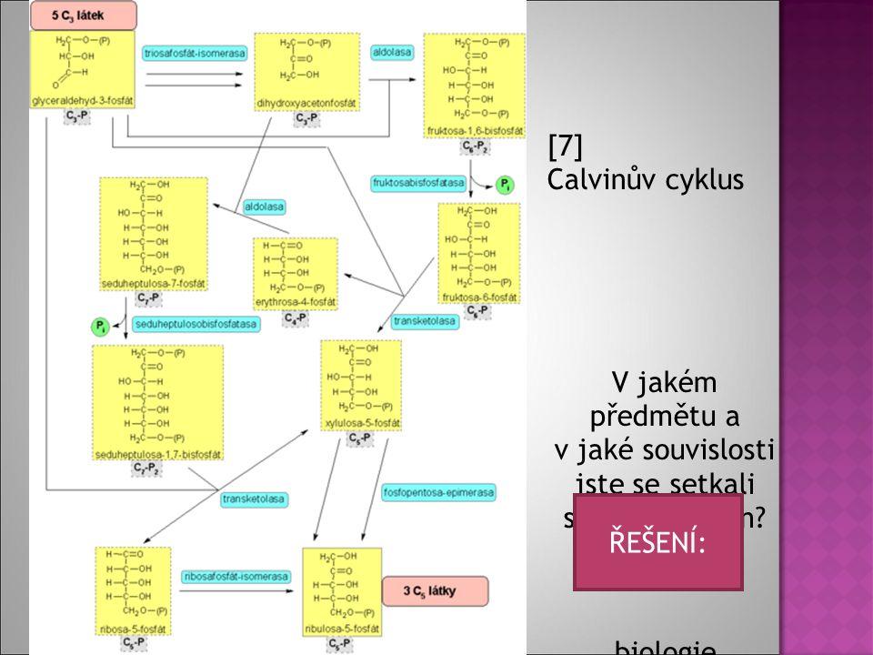 [7] Calvinův cyklus V jakém předmětu a v jaké souvislosti jste se setkali s tímto cyklem.