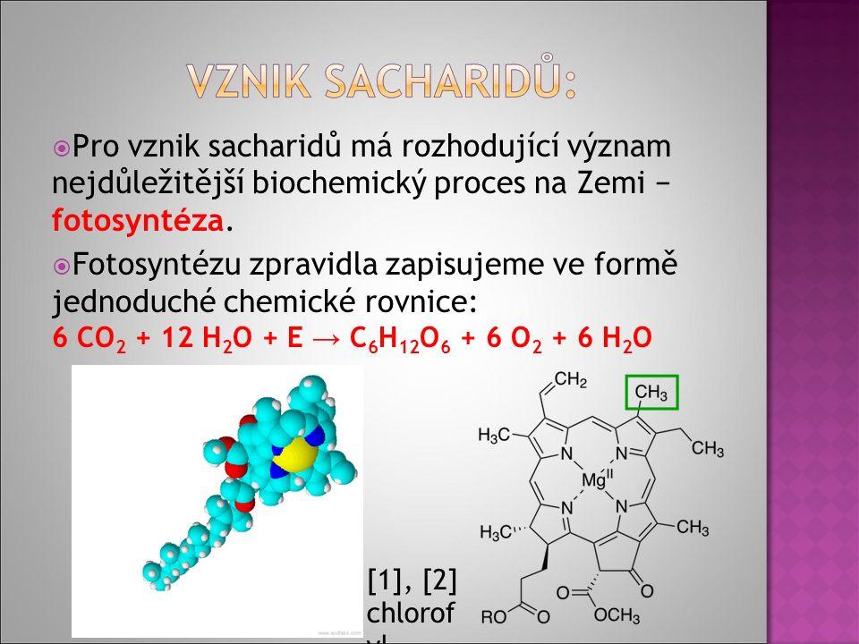  Pro vznik sacharidů má rozhodující význam nejdůležitější biochemický proces na Zemi − fotosyntéza.