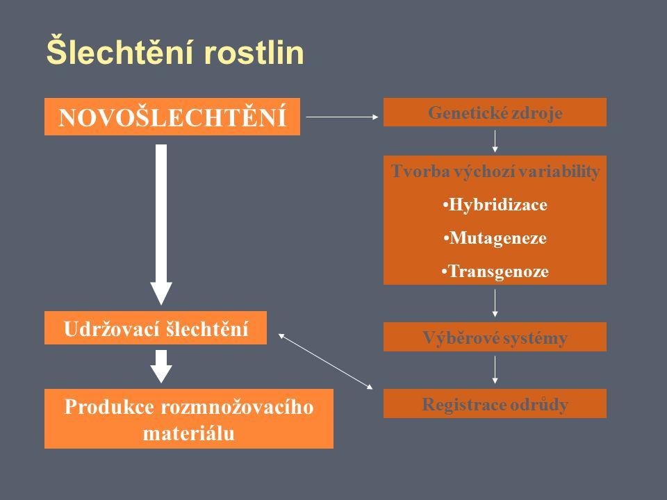 Šlechtění rostlin NOVOŠLECHTĚNÍ Udržovací šlechtění Produkce rozmnožovacího materiálu Tvorba výchozí variability Hybridizace Mutageneze Transgenoze Genetické zdroje Výběrové systémy Registrace odrůdy