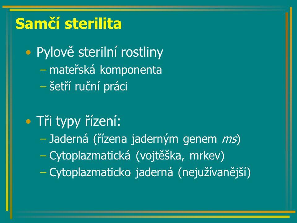 Samčí sterilita Pylově sterilní rostliny –mateřská komponenta –šetří ruční práci Tři typy řízení: –Jaderná (řízena jaderným genem ms) –Cytoplazmatická (vojtěška, mrkev) –Cytoplazmaticko jaderná (nejužívanější)