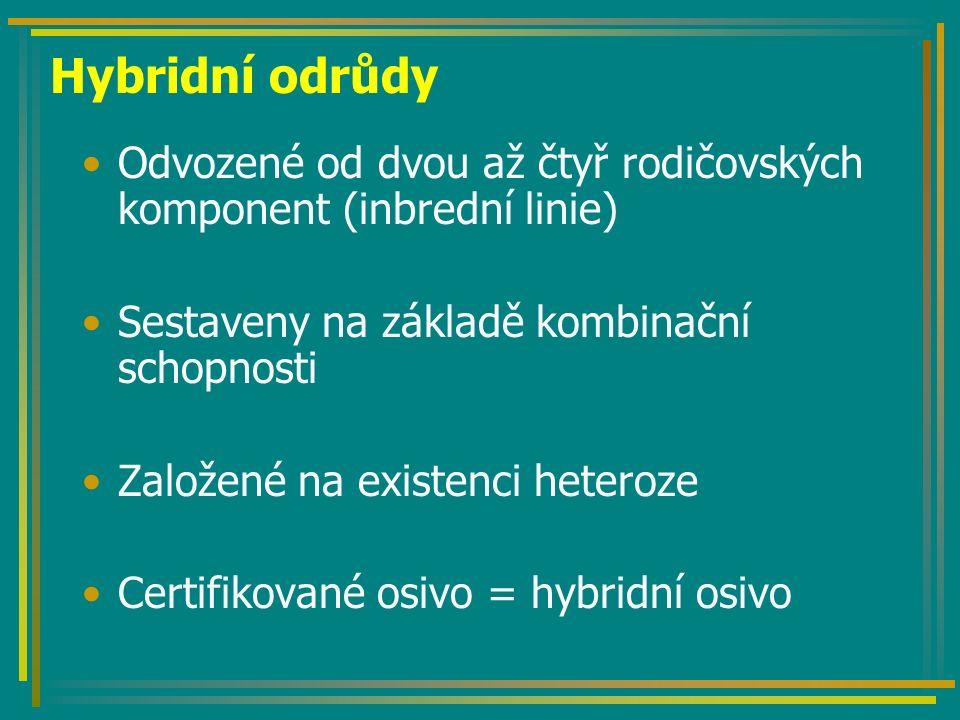 Hybridní odrůdy Odvozené od dvou až čtyř rodičovských komponent (inbrední linie) Sestaveny na základě kombinační schopnosti Založené na existenci heteroze Certifikované osivo = hybridní osivo