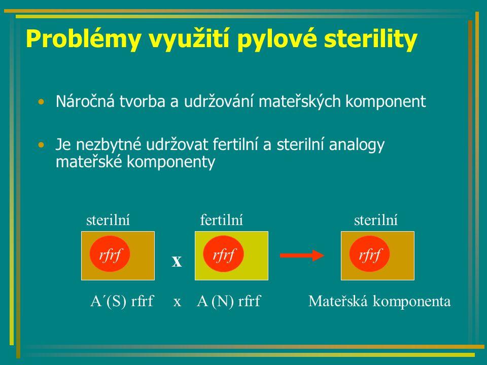 Problémy využití pylové sterility Náročná tvorba a udržování mateřských komponent Je nezbytné udržovat fertilní a sterilní analogy mateřské komponenty rfrf x sterilní Mateřská komponentaA´(S) rfrf x A (N) rfrf sterilnífertilní