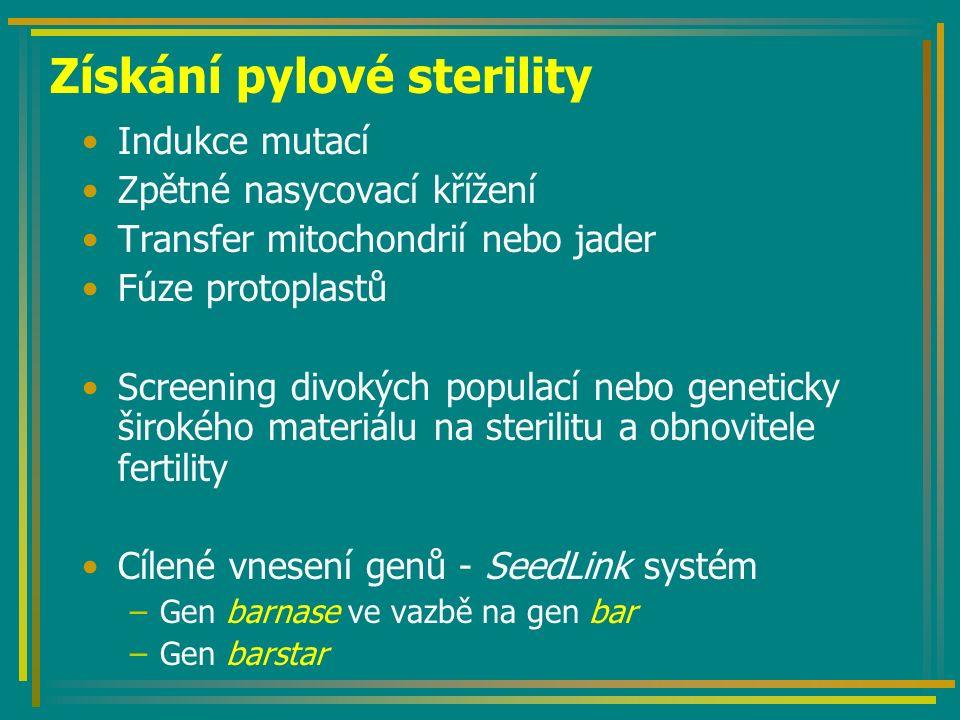 Získání pylové sterility Indukce mutací Zpětné nasycovací křížení Transfer mitochondrií nebo jader Fúze protoplastů Screening divokých populací nebo geneticky širokého materiálu na sterilitu a obnovitele fertility Cílené vnesení genů - SeedLink systém –Gen barnase ve vazbě na gen bar –Gen barstar