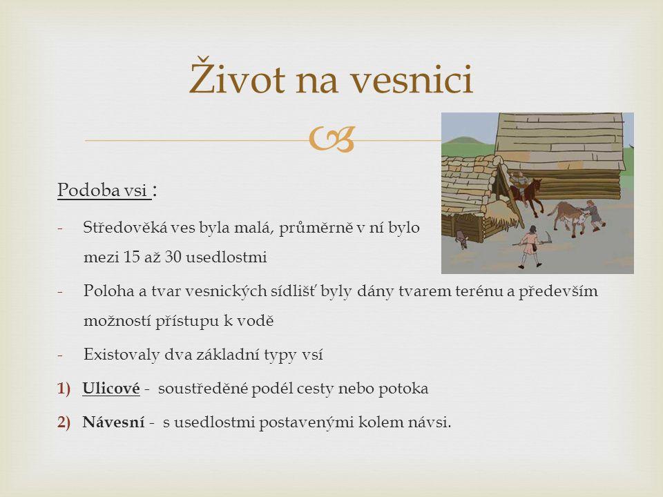  Podoba vsi : -Středověká ves byla malá, průměrně v ní bylo mezi 15 až 30 usedlostmi -Poloha a tvar vesnických sídlišť byly dány tvarem terénu a především možností přístupu k vodě -Existovaly dva základní typy vsí 1) Ulicové - soustředěné podél cesty nebo potoka 2) Návesní - s usedlostmi postavenými kolem návsi.