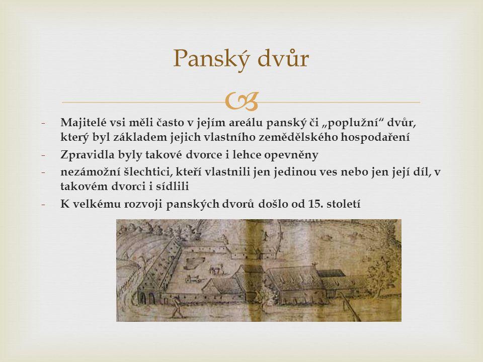 """ Panský dvůr - Majitelé vsi měli často v jejím areálu panský či """"poplužní dvůr, který byl základem jejich vlastního zemědělského hospodaření - Zpravidla byly takové dvorce i lehce opevněny - nezámožní šlechtici, kteří vlastnili jen jedinou ves nebo jen její díl, v takovém dvorci i sídlili - K velkému rozvoji panských dvorů došlo od 15."""