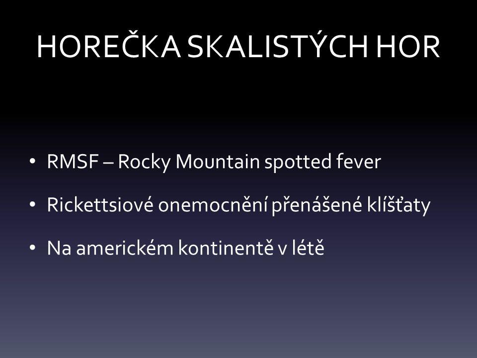 HOREČKA SKALISTÝCH HOR RMSF – Rocky Mountain spotted fever Rickettsiové onemocnění přenášené klíšťaty Na americkém kontinentě v létě