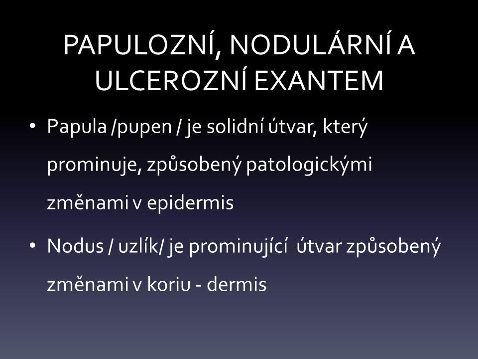 PAPULOZNÍ, NODULÁRNÍ A ULCEROZNÍ EXANTEM Papula /pupen / je solidní útvar, který prominuje, způsobený patologickými změnami v epidermis Nodus / uzlík/ je prominující útvar způsobený změnami v koriu - dermis