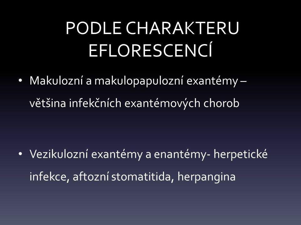 PODLE CHARAKTERU EFLORESCENCÍ Makulozní a makulopapulozní exantémy – většina infekčních exantémových chorob Vezikulozní exantémy a enantémy- herpetické infekce, aftozní stomatitida, herpangina