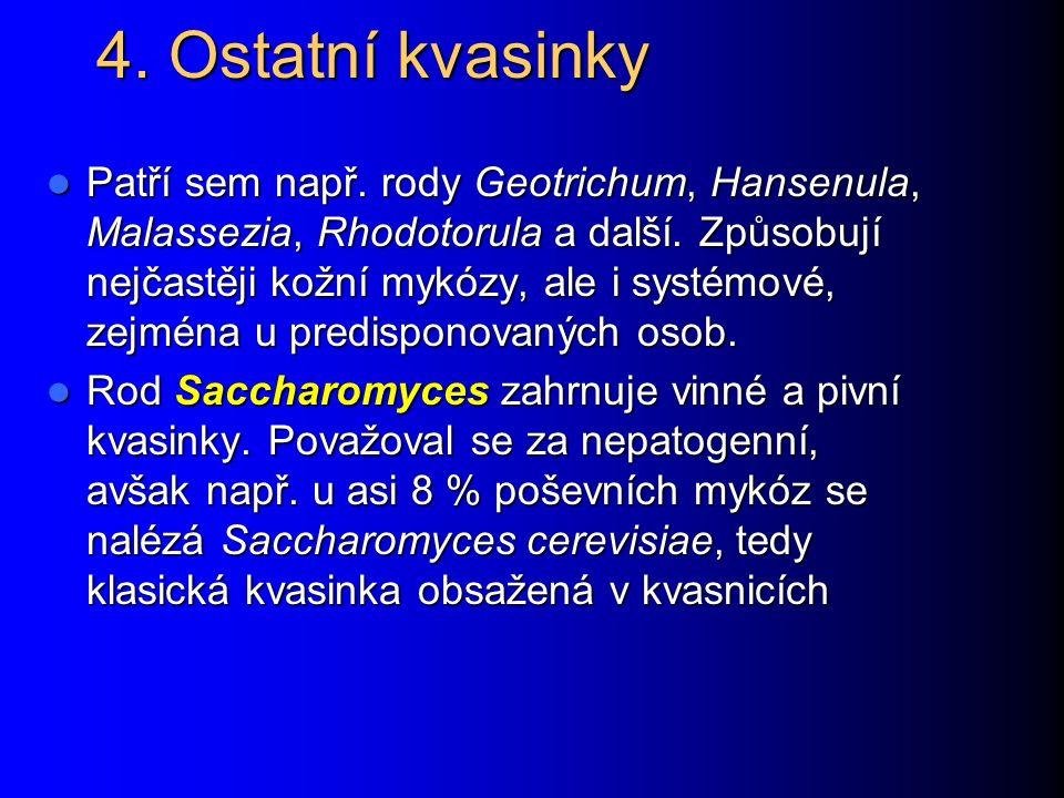 Pneumocystis jiroveci www.medmicro.info