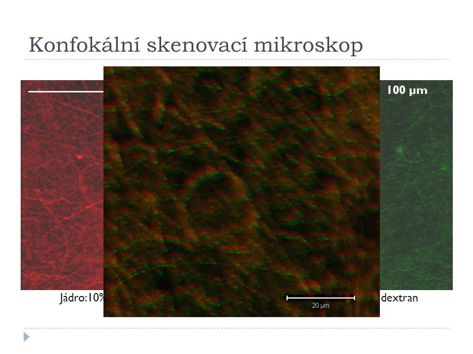 Konfokální skenovací mikroskop 100 µm Jádro:10% PVA + rhodaminPlášť: 12% PVA + fitc dextran
