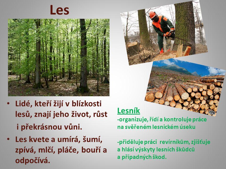 Les Lidé, kteří žijí v blízkosti lesů, znají jeho život, růst i překrásnou vůni.