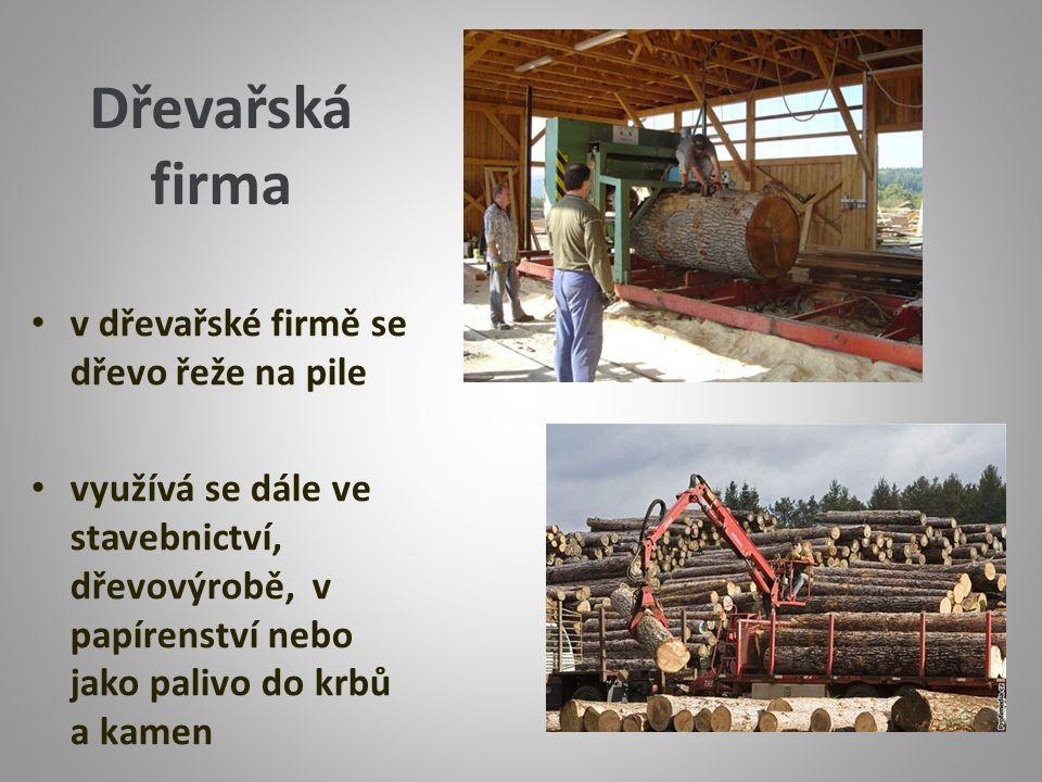 Dřevařská firma v dřevařské firmě se dřevo řeže na pile využívá se dále ve stavebnictví, dřevovýrobě, v papírenství nebo jako palivo do krbů a kamen