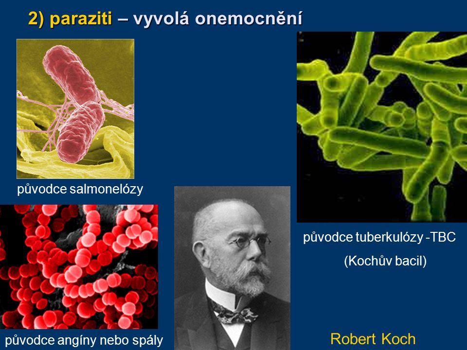 2) paraziti – vyvolá onemocnění původce salmonelózy původce angíny nebo spály původce tuberkulózy -TBC (Kochův bacil) Robert Koch