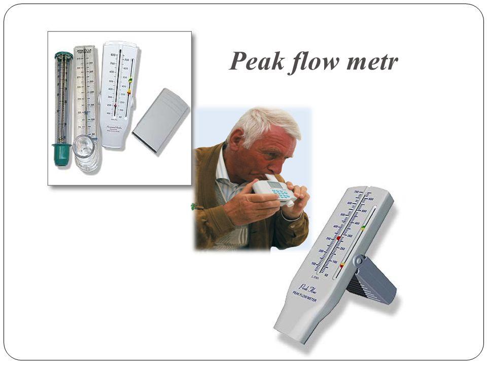 Peak flow metr