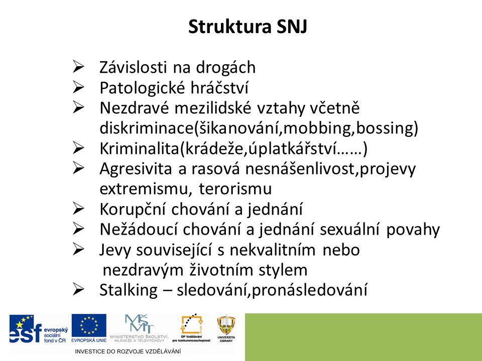 Struktura SNJ  Závislosti na drogách  Patologické hráčství  Nezdravé mezilidské vztahy včetně diskriminace(šikanování,mobbing,bossing)  Kriminalit