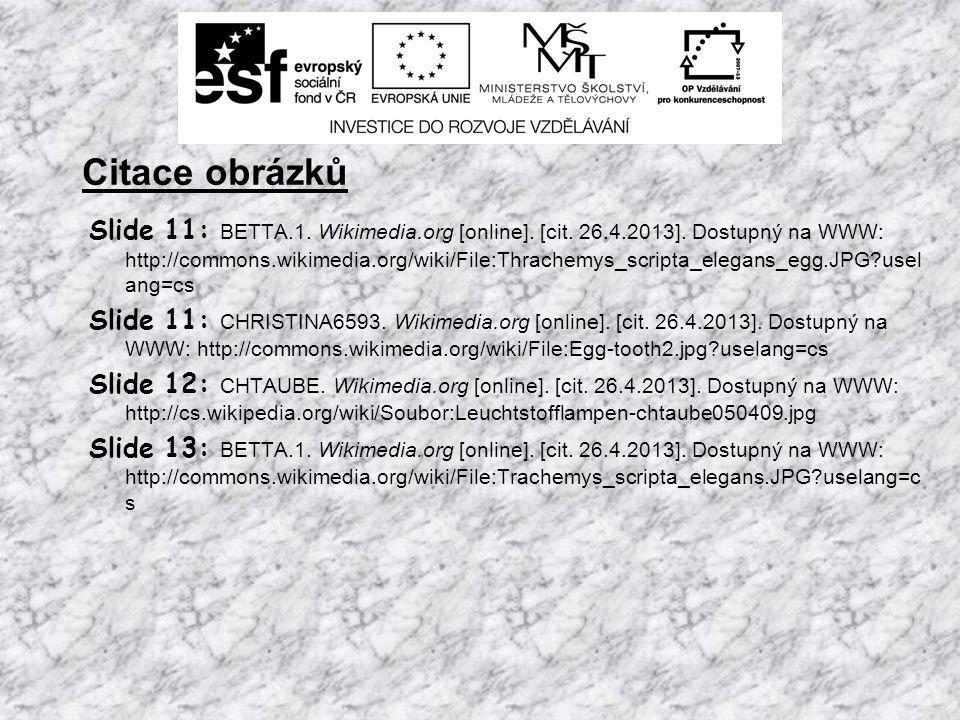 Citace obrázků Slide 11: BETTA.1. Wikimedia.org [online].