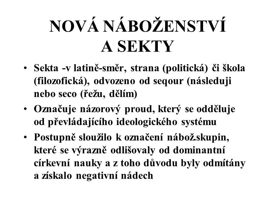 UŽÍVÁNÍ SLOVA SEKTA a)Žurnalistika – jakékoliv nábož.