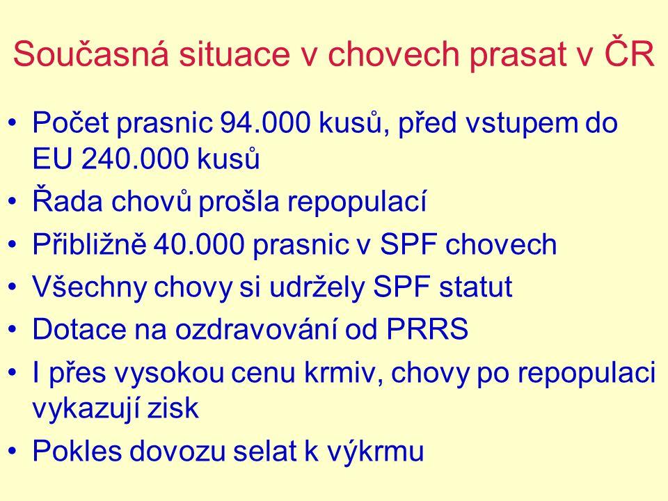 Současná situace v chovech prasat v ČR Počet prasnic 94.000 kusů, před vstupem do EU 240.000 kusů Řada chovů prošla repopulací Přibližně 40.000 prasni