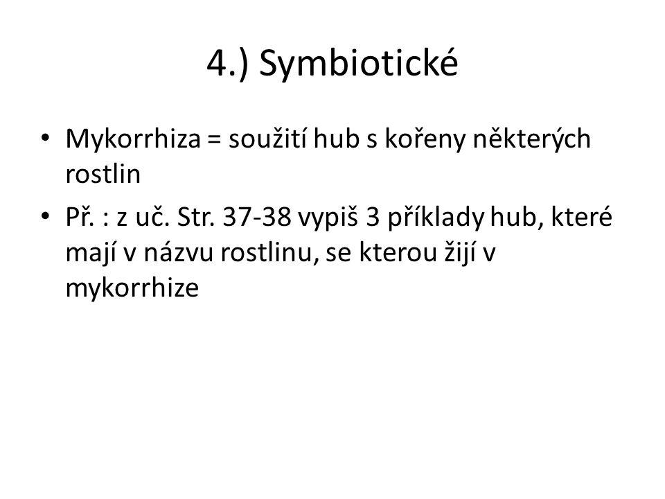 4.) Symbiotické Mykorrhiza = soužití hub s kořeny některých rostlin Př.
