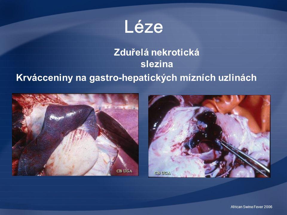 African Swine Fever 2006 Léze Zduřelá nekrotická slezina Krvácceniny na gastro-hepatických mízních uzlinách