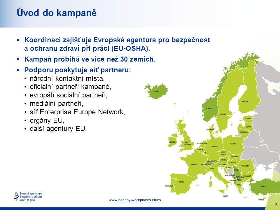 2 www.healthy-workplaces.eu/cs Úvod do kampaně  Koordinaci zajišťuje Evropská agentura pro bezpečnost a ochranu zdraví při práci (EU-OSHA).