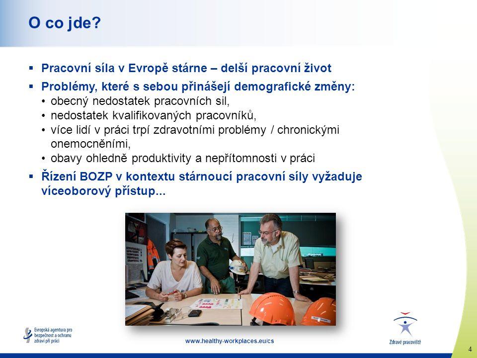 5 www.healthy-workplaces.eu/cs Prevence po celou dobu pracovního života – holistický přístup  Zdravotní stav v pozdějším věku ovlivňují pracovní podmínky v mladším věku.