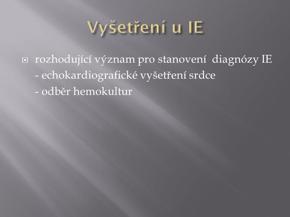  základní vyšetřovací metoda při podezření na IE  při dobré vyšetřitelnosti transtorakální echokardiografie (TTE), při rozpacích jícnová echokardiografie (TEE)  při negativitě TEE a přetrvávání podezření na IE opakovat TEE za 2-10 dní  opakované vyšetření při nejednoznačných nálezech TEE nebo při progresi onemocnění (srdeční selhávání, embolizace)  nálezy svědčící pro diagnózu IE = vegetace, abscesy, perforace cípů či ruptury závěsného aparátu a nově vzniklé dehiscence chlopenních protéz