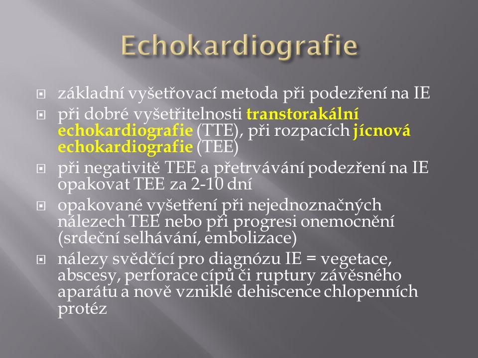  základní vyšetřovací metoda při podezření na IE  při dobré vyšetřitelnosti transtorakální echokardiografie (TTE), při rozpacích jícnová echokardiog