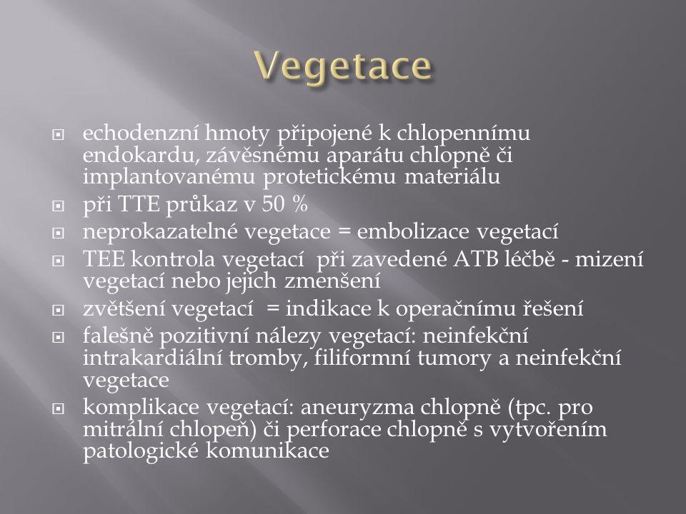  echodenzní hmoty připojené k chlopennímu endokardu, závěsnému aparátu chlopně či implantovanému protetickému materiálu  při TTE průkaz v 50 %  neprokazatelné vegetace = embolizace vegetací  TEE kontrola vegetací při zavedené ATB léčbě - mizení vegetací nebo jejich zmenšení  zvětšení vegetací = indikace k operačnímu řešení  falešně pozitivní nálezy vegetací: neinfekční intrakardiální tromby, filiformní tumory a neinfekční vegetace  komplikace vegetací: aneuryzma chlopně (tpc.