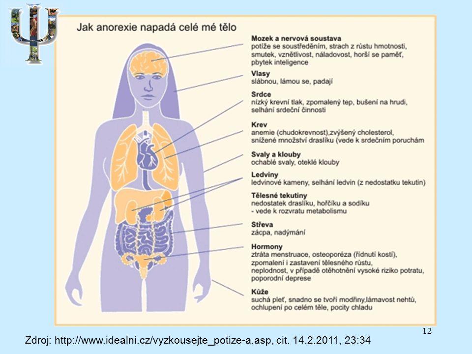 12 Zdroj: http://www.idealni.cz/vyzkousejte_potize-a.asp, cit. 14.2.2011, 23:34