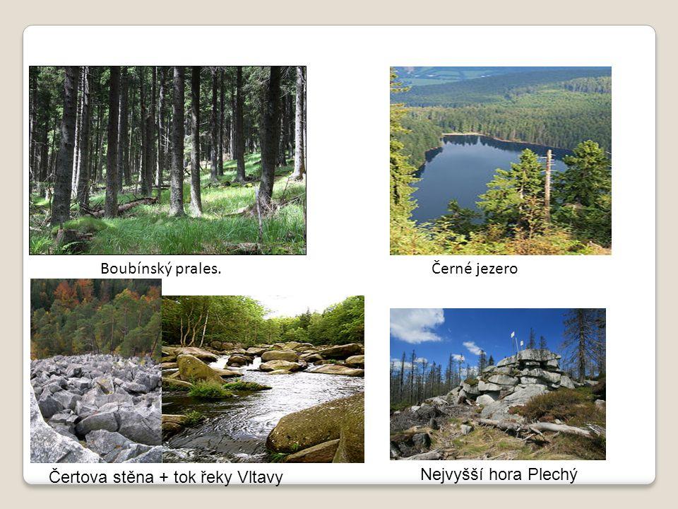 Vrchovištní rašeliniště Chalupská slať Nachází se zde Chalupské jezírko, největší rašelinné jezero v Česku - má rozlohu 1,3 ha.
