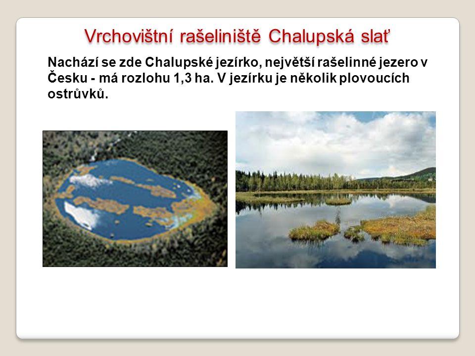 Vrchovištní rašeliniště Chalupská slať Nachází se zde Chalupské jezírko, největší rašelinné jezero v Česku - má rozlohu 1,3 ha. V jezírku je několik p