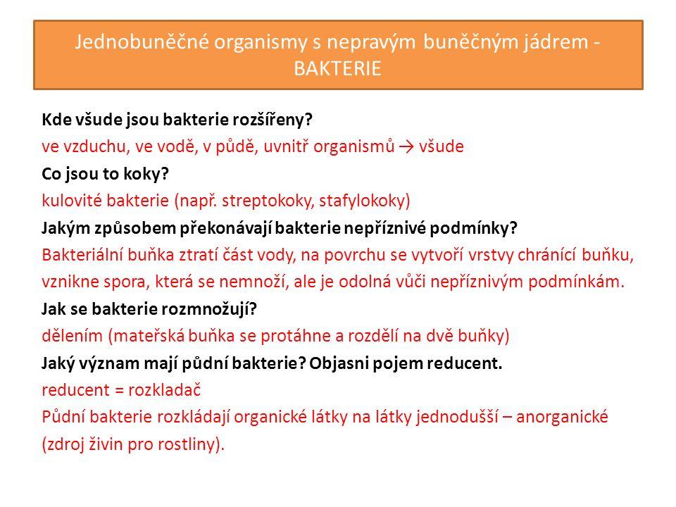 Jednobuněčné organismy s nepravým buněčným jádrem – BAKTERIE Objasni pojem choroboplodné bakterie.