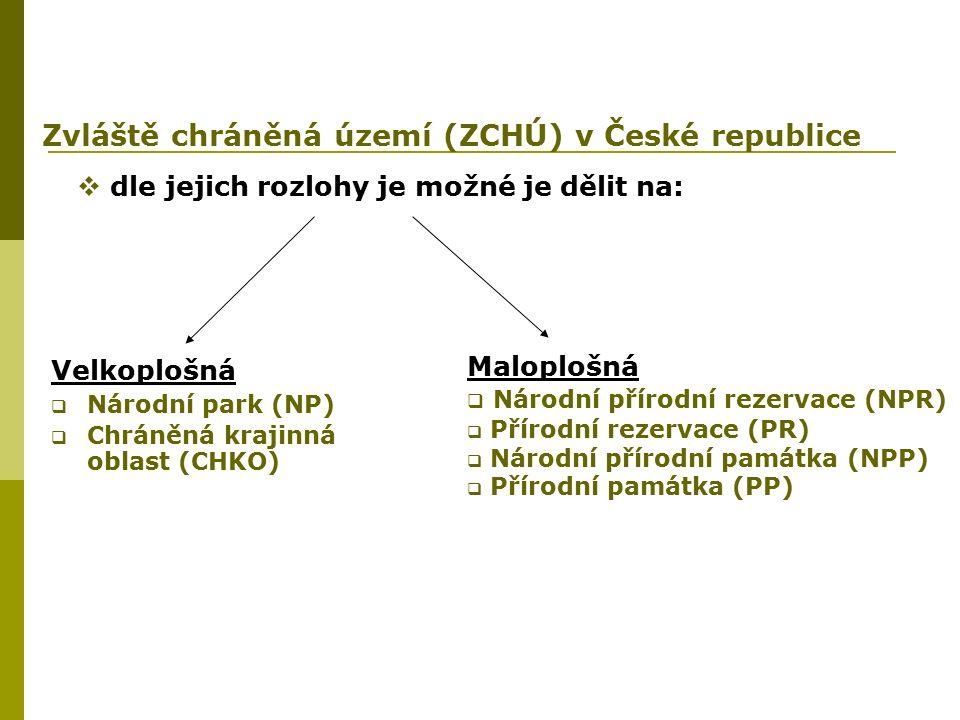 = rozsáhlá území jedinečná v národním nebo mezinárodním měřítku s málo ovlivněnými ekosystémy - vyhlašovány Parlamentem ČR formou zákona - v ČR celkem 4, pokrývají 1,52 % rozlohy státu NP Krkonoše (nejstarší: -> 17.5.1963, rozloha: 36 300 ha )NP Krkonoše NP Šumava (největší: 68 064 ha, -> 20.3.1991)NP Šumava NP Podyjí (nejmenší: 6 259 ha, -> 20.3.1991)NP Podyjí NP České Švýcarsko (nejmladší: -> 1.1.2000, rozloha 7 900 ha)NP České Švýcarsko - .