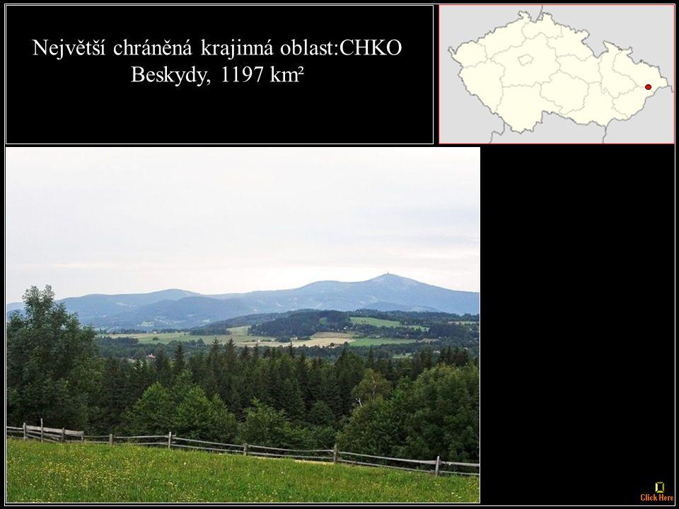Nejstarší národní park: Krkonošský NP, zřízen v roce 1963
