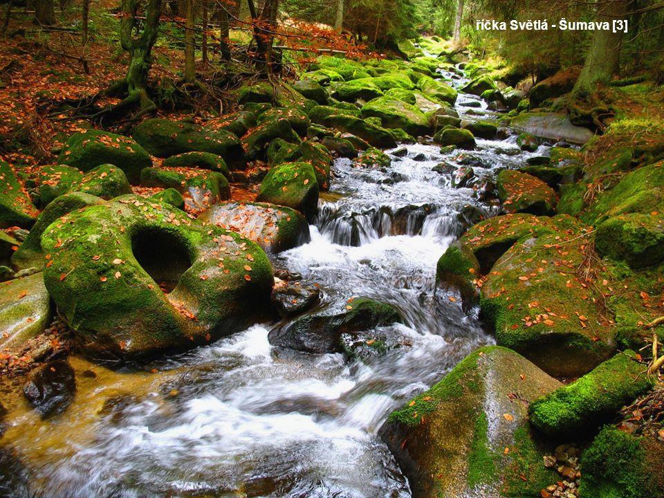 Ochrana přírody ČR PODYJÍ – založeno roku 1991.