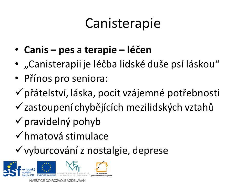 """Canisterapie Canis – pes a terapie – léčen """"Canisterapii je léčba lidské duše psí láskou Přínos pro seniora: přátelství, láska, pocit vzájemné potřebnosti zastoupení chybějících mezilidských vztahů pravidelný pohyb hmatová stimulace vyburcování z nostalgie, deprese"""