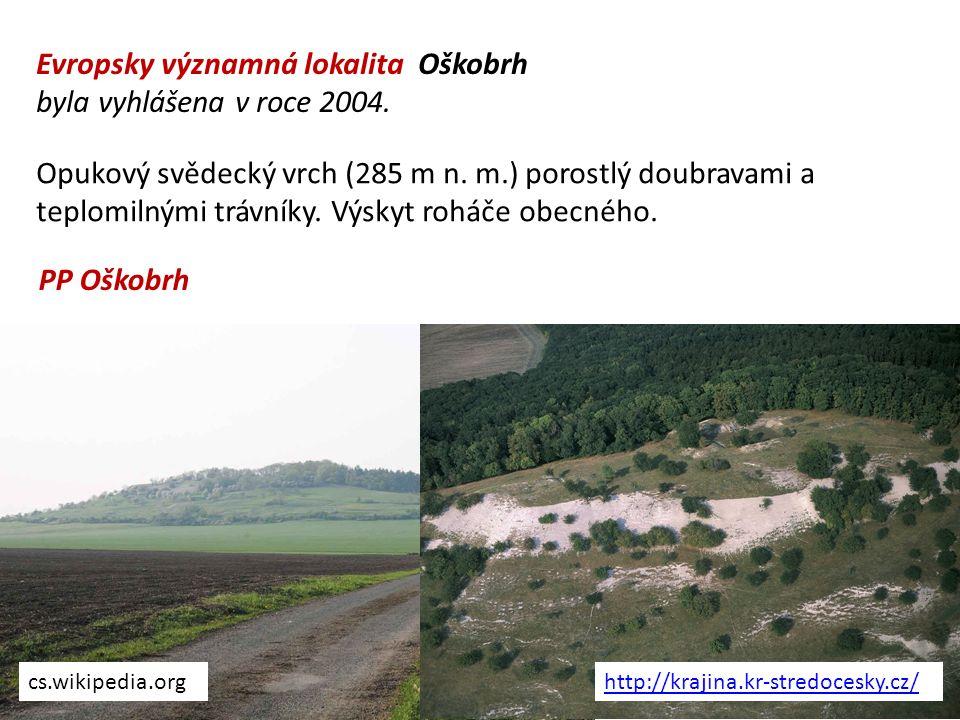 Evropsky významná lokalita Oškobrh byla vyhlášena v roce 2004.