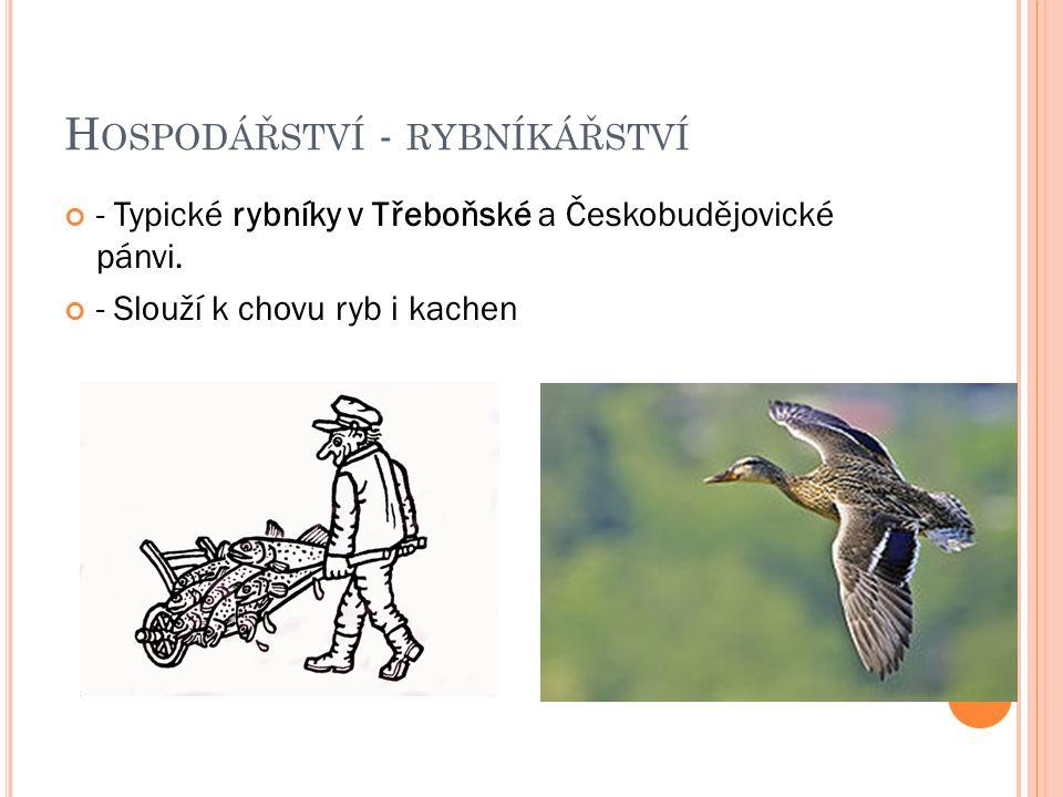 H OSPODÁŘSTVÍ - RYBNÍKÁŘSTVÍ - Typické rybníky v Třeboňské a Českobudějovické pánvi.