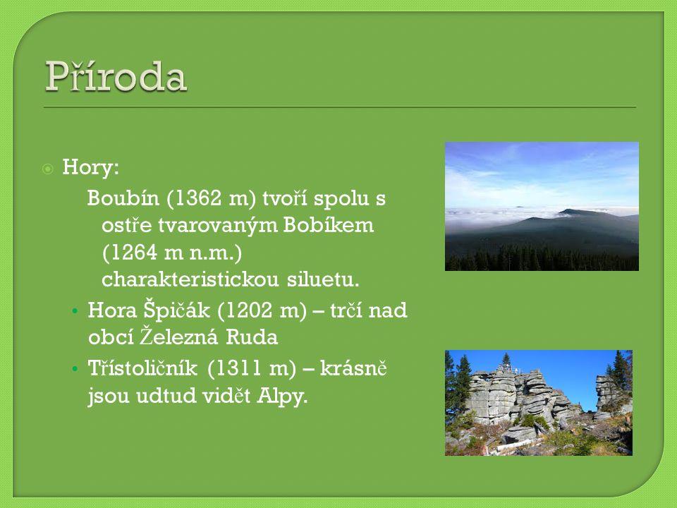  Hory: Boubín (1362 m) tvo ř í spolu s ost ř e tvarovaným Bobíkem (1264 m n.m.) charakteristickou siluetu. Hora Špi č ák (1202 m) – tr č í nad obcí Ž