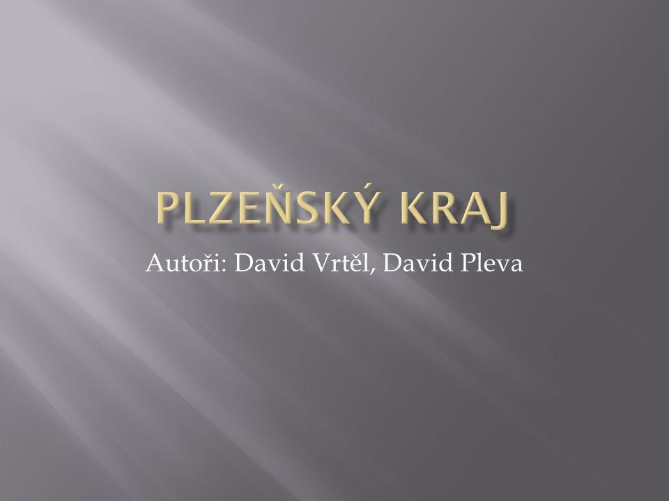 Autoři: David Vrtěl, David Pleva