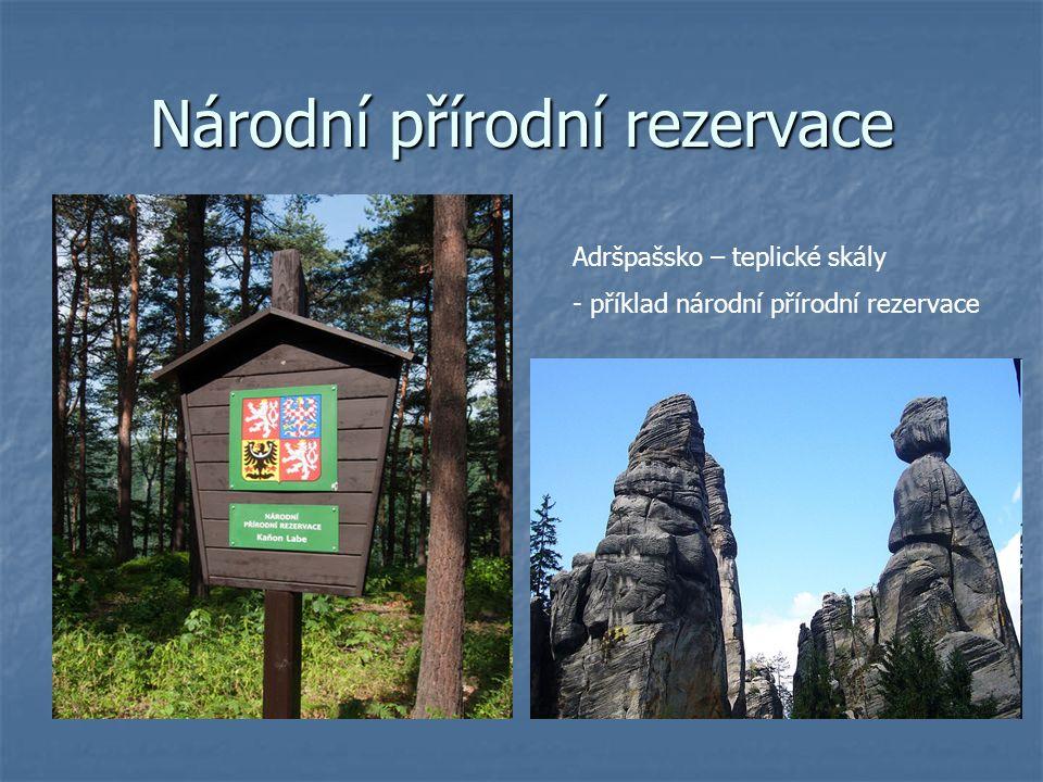 Národní přírodní rezervace Adršpašsko – teplické skály - příklad národní přírodní rezervace