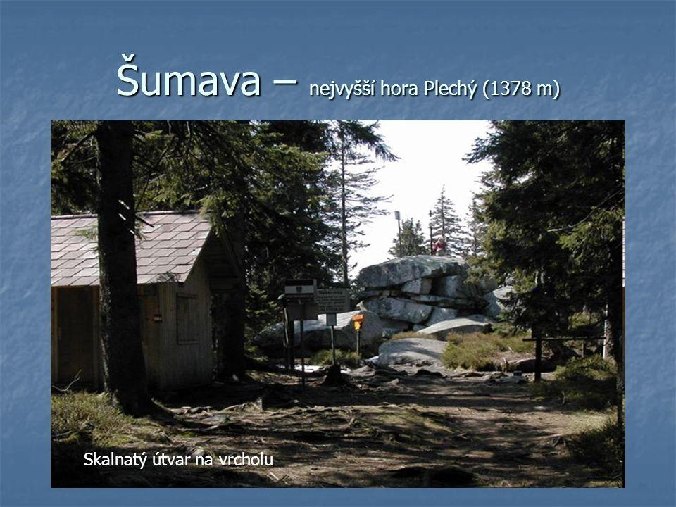 Šumava – nejvyšší hora Plechý (1378 m) Skalnatý útvar na vrcholu