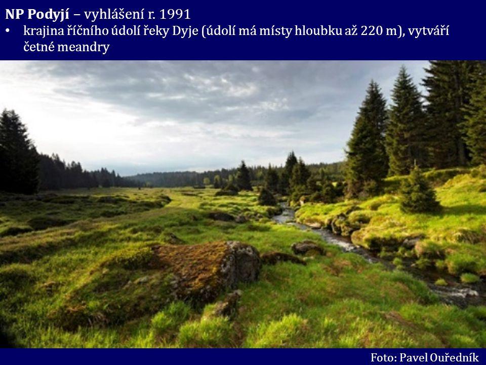 NP Podyjí – vyhlášení r. 1991 krajina říčního údolí řeky Dyje (údolí má místy hloubku až 220 m), vytváří četné meandry Foto: Pavel Ouředník