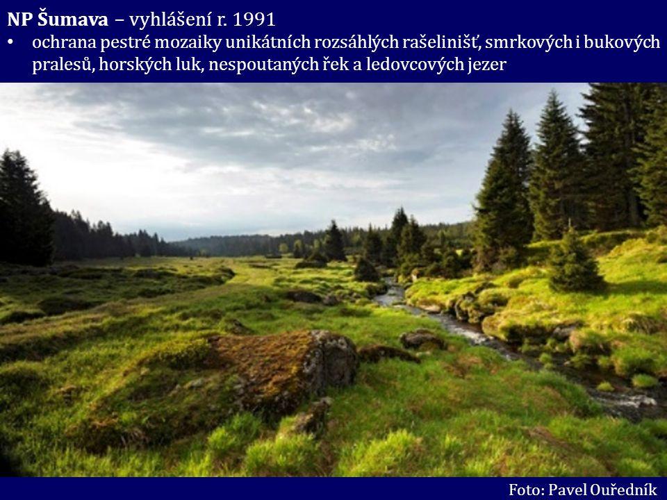NP Šumava – vyhlášení r. 1991 ochrana pestré mozaiky unikátních rozsáhlých rašelinišť, smrkových i bukových pralesů, horských luk, nespoutaných řek a