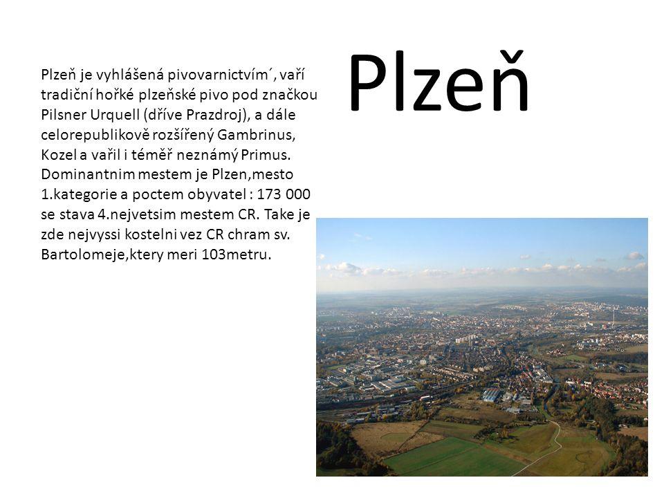 Plzeň je vyhlášená pivovarnictvím´, vaří tradiční hořké plzeňské pivo pod značkou Pilsner Urquell (dříve Prazdroj), a dále celorepublikově rozšířený G
