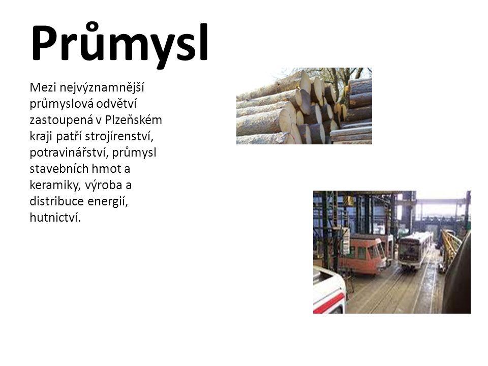 Průmysl Mezi nejvýznamnější průmyslová odvětví zastoupená v Plzeňském kraji patří strojírenství, potravinářství, průmysl stavebních hmot a keramiky, v