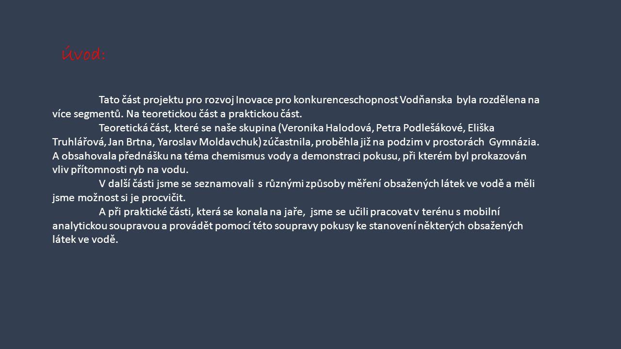 Tato část projektu pro rozvoj Inovace pro konkurenceschopnost Vodňanska byla rozdělena na více segmentů.