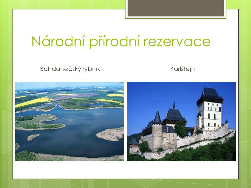 Národní přírodní rezervace Bohdanečský rybník Karlštejn