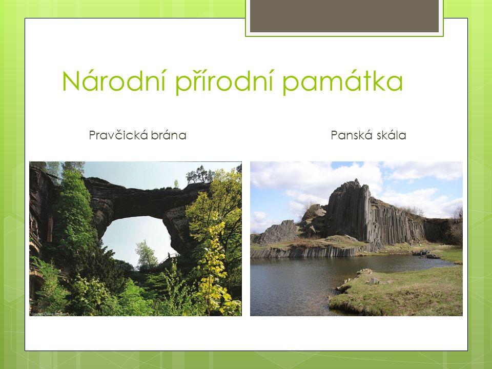 Národní přírodní památka Pravčická brána Panská skála